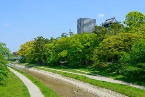 岡崎市でおすすめのトリミングサロン3選!口コミ掲載