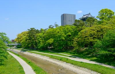岡崎市でおすすめのトリミングサロン2選!口コミ掲載
