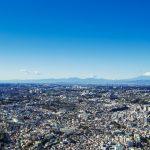 北区(東京)でおすすめのトリミングサロン3選!口コミ掲載