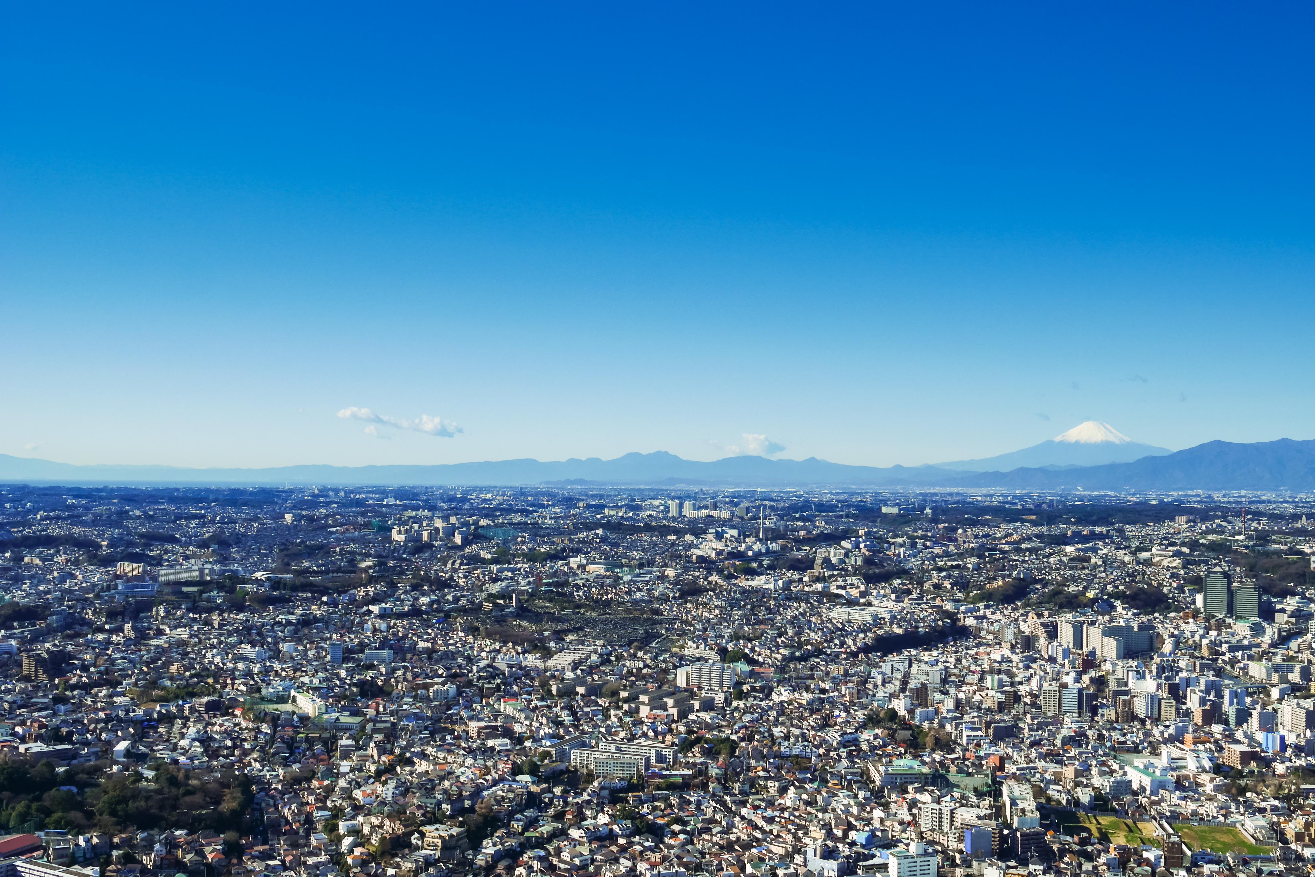横浜市旭区で愛犬におすすめのトリミングサロン3選!