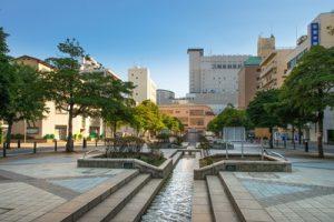 千葉市中央区でおすすめの動物病院5選!口コミ掲載