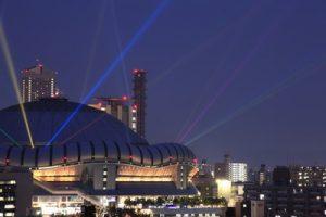 大阪市西区でトリミング!評判のペットサロン8選!送迎のある施設多数