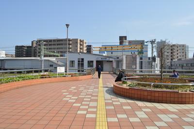 横浜市神奈川区でトリミング!人気ペットサロン3選!