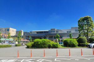 横浜市青葉区でトリミング!人気のペットサロン3選!口コミ掲載