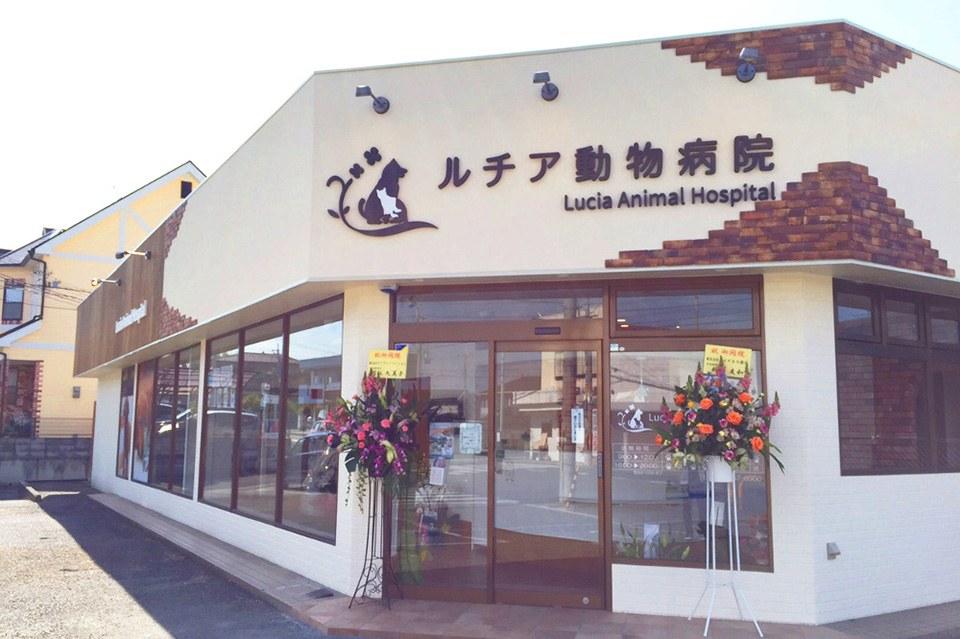 ルチア動物病院 外観写真