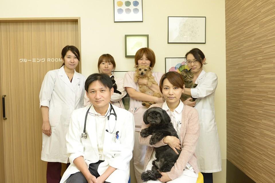 くずのは動物病院 スタッフ写真