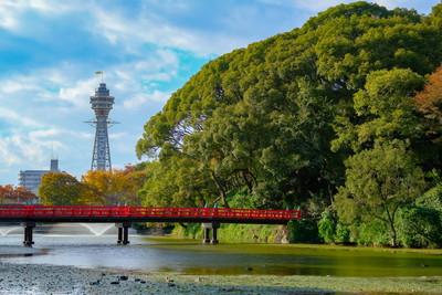 大阪市浪速区で人気のトリミングサロン5選!