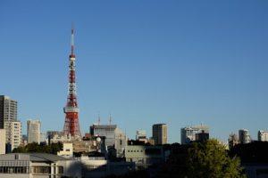 港区(東京都)で人気のトリミングサロン10選!
