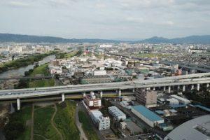 大阪市平野区でトリミング!人気のペットサロン5選!