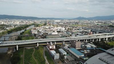 大阪市平野区でトリミング!人気のペットサロン4選!
