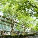 渋谷区で評判の動物病院8選!口コミ掲載