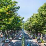 渋谷区で人気のトリミングサロン9選!