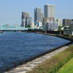和歌山市でトリミング!口コミ多数【8選】