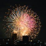 福岡市東区でトリミング!人気のペットサロン6選!