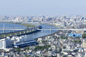 江戸川区のトリミング!人気のペットサロン6選!送迎可能