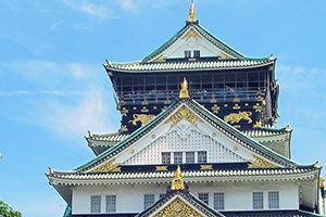 大阪市でしつけ教室併設のおすすめのトリミングサロン