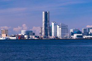 横浜市でシャンプーが得意なトリミングサロン9選