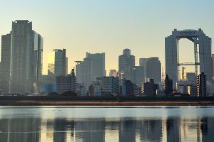 大阪市で写真撮影サービスがある人気トリミングサロン9選