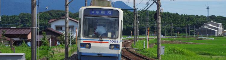 飯塚市でトリミングをするならココ!【3選】