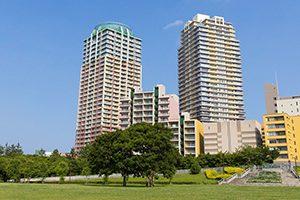 千葉市でシャンプーが評判の人気トリミングサロン5選