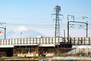 平塚市でトリミング!シャンプーが得意なサロン【3選】