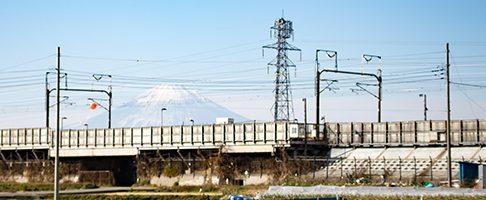 平塚市でトリミング!シャンプーが得意なサロン【5選】