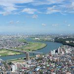 鎌ヶ谷市でトリミング!おすすめ【4選】