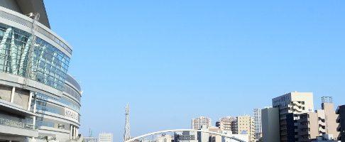 さいたま市でトリミング!ペットホテル併設【4選】