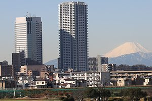 大田区でトリミング!動物病院併設サロン【4選】