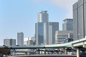 大阪市にある歯磨きオプション付きのトリミングサロン6選