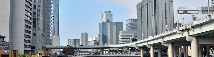 大阪市にある歯磨きオプション付きのトリミングサロン3選