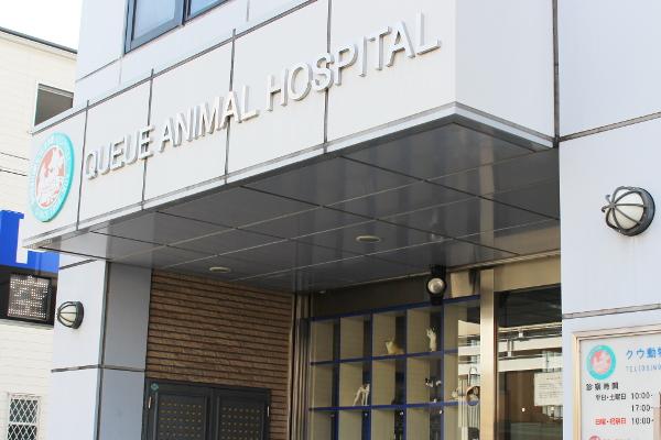 クウ動物病院のエントランス