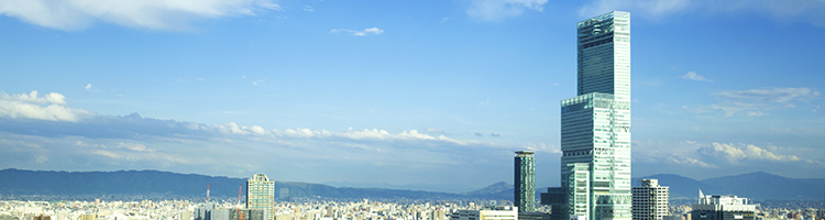 阿倍野区でトリミングをするならココ!【5選】