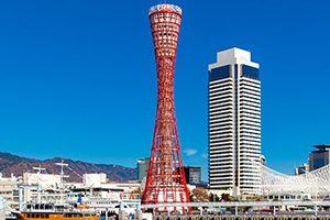 神戸市の往診に来てくれる動物病院7選