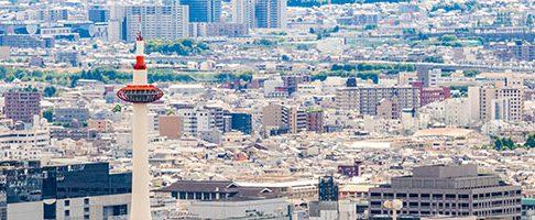 京都市で大型犬におすすめのトリミングサロン6選