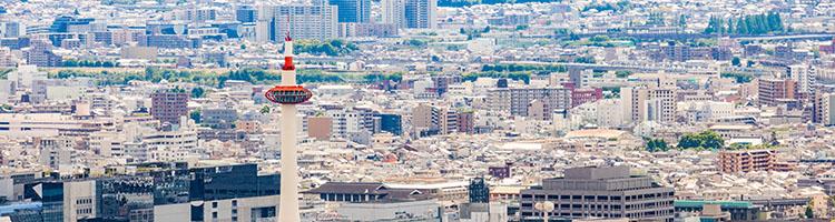 京都市で大型犬におすすめのトリミングサロン【8選】