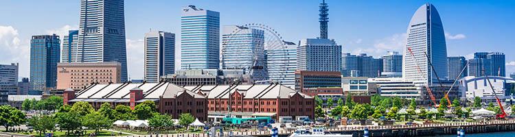 横浜市のマイクロチップ装着が可能なおすすめ動物病院13選