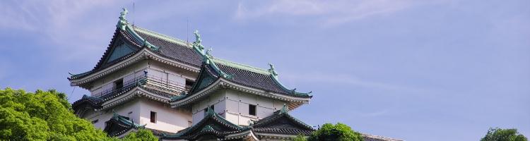 和歌山市で写真撮影をしてくれるトリミングサロン特集!