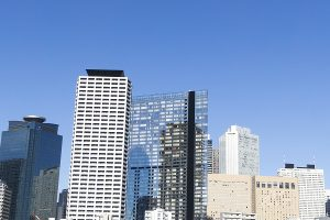新宿区で写真撮影ができるトリミングサロン