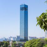 千葉市で当日対応してくれるおすすめ動物病院【10選】
