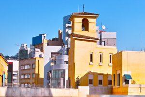 川崎市で写真撮影!人気トリミングサロン【3選】