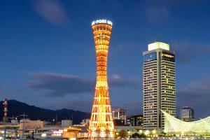神戸市で写真撮影!人気トリミングサロン【6選】