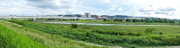 大田区で女性獣医師が在籍しているおすすめ動物病院【3選】
