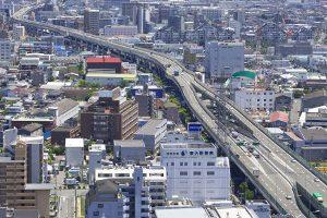 東大阪市の一時預かりサービスがあるおすすめトリミングサロン