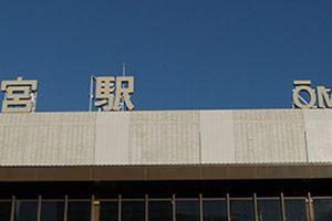 さいたま市で皮膚科がある動物病院【10選】