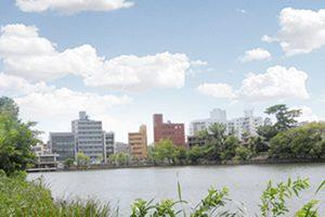 大田区でクーポンが利用できる人気のトリミングサロン【3選】