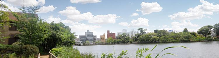 矢口渡駅(大田区)の動物病院!土日・祝日に診療している【3選】
