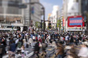 渋谷区で写真撮影!人気トリミングサロン【3選】