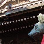 豊川市でトリミングをするならココ!
