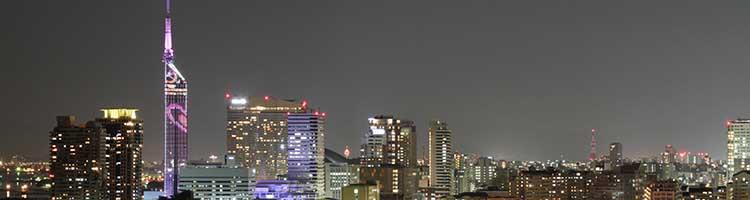早良区(福岡)でトリミング!おすすめペットサロン